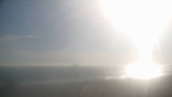 Webcam Surfside, California