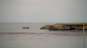 Webcam Santa Cruz, California