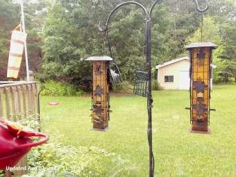 Webcam Central Lake, Michigan