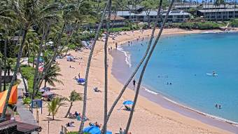 Webcam Napili Bay, Hawaii
