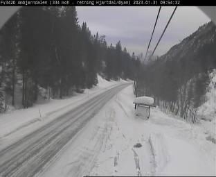Webcam Svartdal