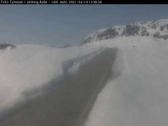 Webcam Øye