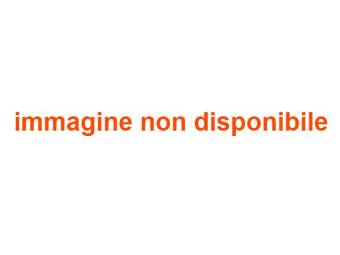 Webcam Bobbio Pellice