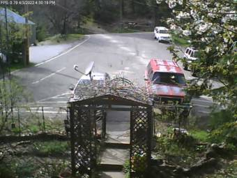Webcam Alleghany, California