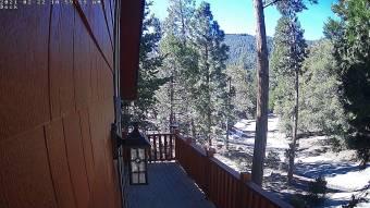 Webcam Alta Sierra, Kalifornien