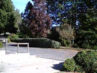 Webcam Paradise, California