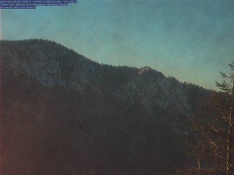 Webcam Camp Nelson, California