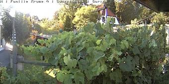 Webcam Schwarzenbek