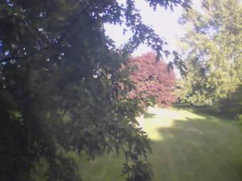 Batavia, Illinois 44 minutes ago