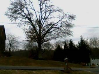 Butler, Pennsylvania 21 minutes ago