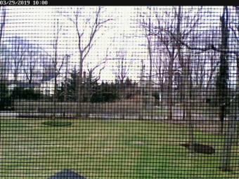 Webcam East Setauket, New York