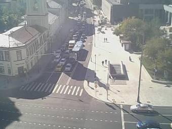 Webcam Jaroslawski boksal