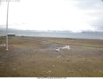 Webcam Isbjørnhamna (Spitzbergen)
