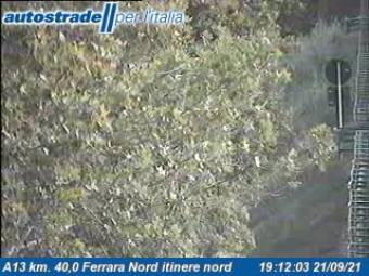 Webcam Porotto