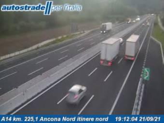 Ancona Ancona 11 minutes ago