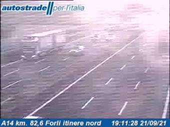 Forlì Forlì 59 minutes ago