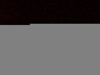 Webcam Bird Island Research Station