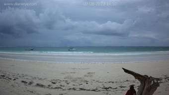 Diani Beach Diani Beach vor 16 Minuten