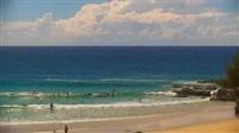 Surfcam Snapper