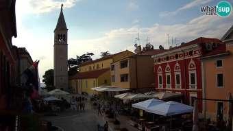 Novigrad 17 hours ago