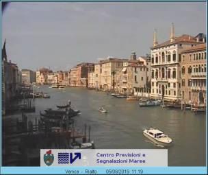 Venice Venice 43 days ago