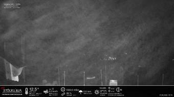 Webcam Leogang