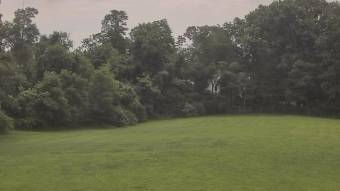 Webcam Oakton, Virginia