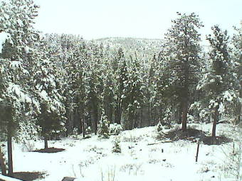 Webcam Nederland, Colorado