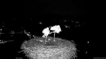 Webcam Röttenbach
