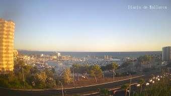 Livestream Port