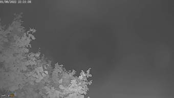 Webcam Waltenhofen