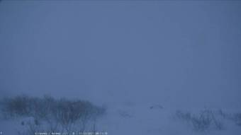 Webcam Kirkenes
