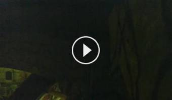 Webcam Siena