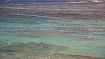 Webcam Waikiki Beach, Hawaii