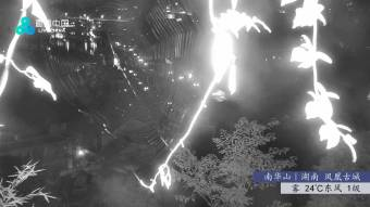 Webcam Fenghuang