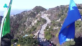 HD Stream Tai Shan