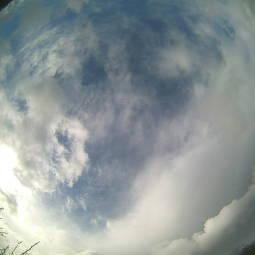 Webcam Mauku
