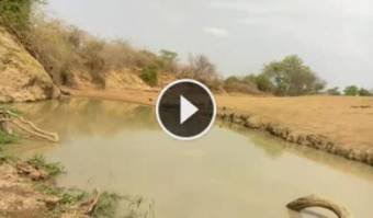 South Luangwa National Park South Luangwa National Park 13 hours ago
