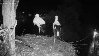 El Arenal (Majorca) El Arenal (Majorca) 8 minutes ago