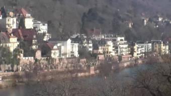Heidelberg Heidelberg 35 minutes ago