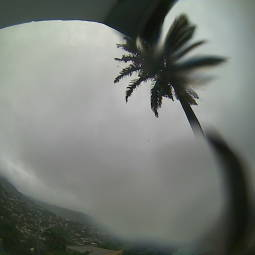 Webcam Port of Spain