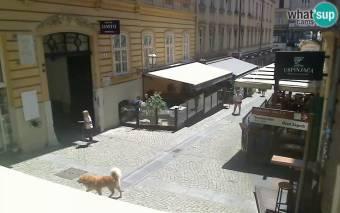 Zagreb Zagreb 71 days ago