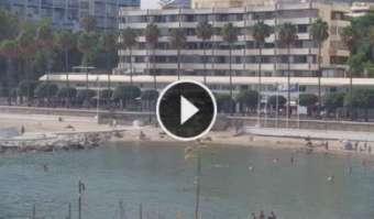 Marbella Marbella 18 giorni fa